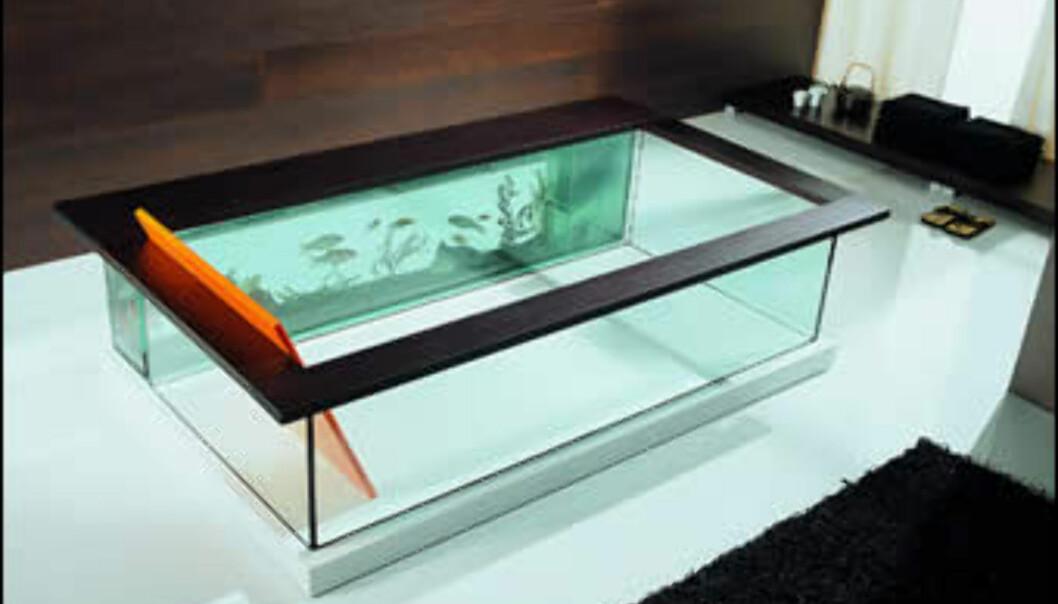 Svøm med fiskene i dette badekaret.<br \><i>Foto: Rossari & Associati</i>