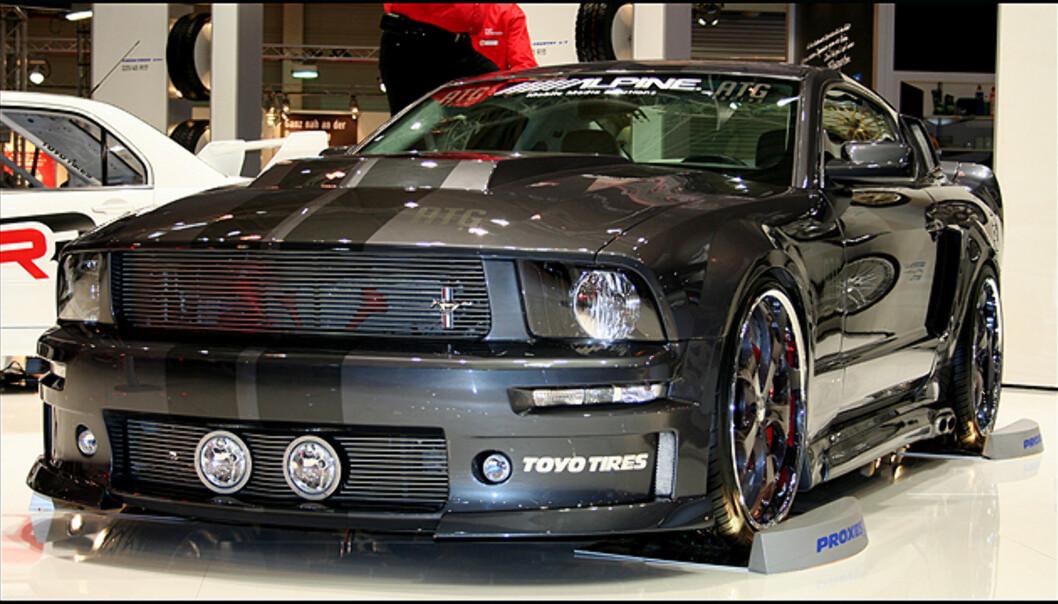 Rå Mustang
