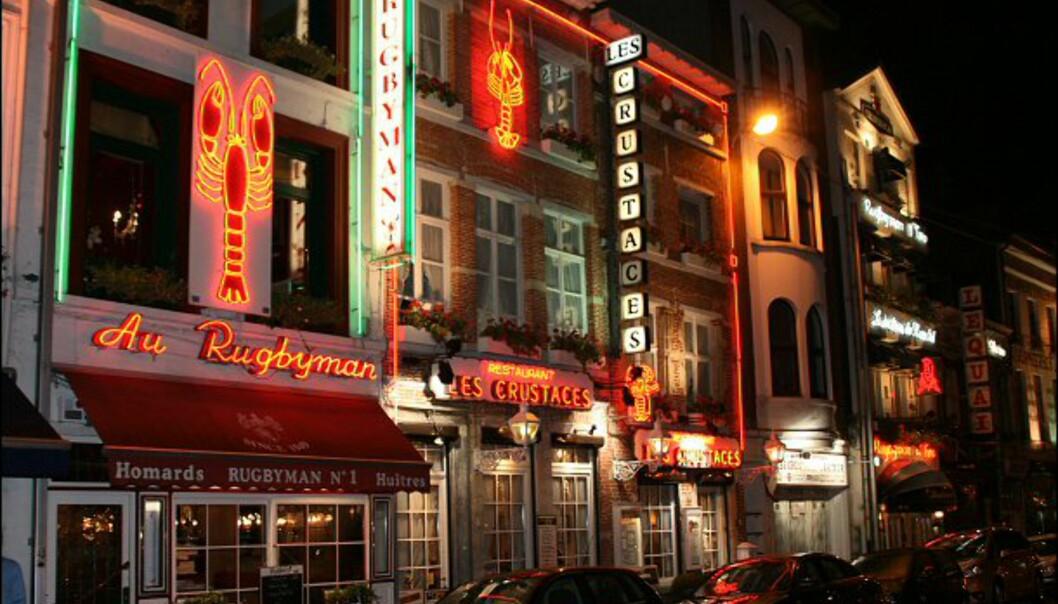 Restaurantene rundt Fischmarkt serverer den lekreste fisk. Rugbyman 2 ble anbefalt av vår belgiske guide, Marleen de Waele.