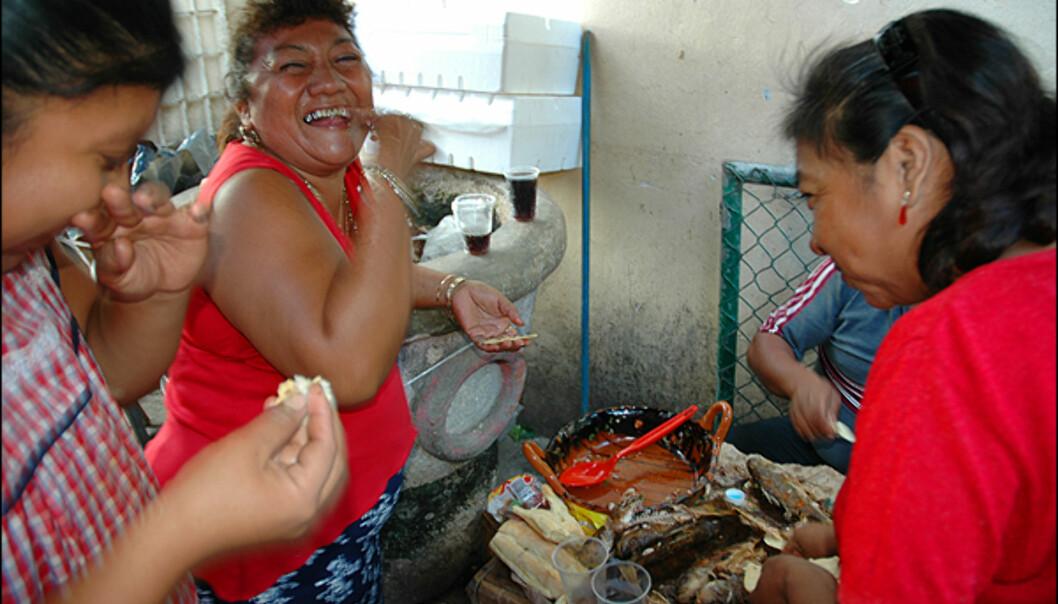 På det lokale markedet koser en familie seg med <i>pollito</i>, en fisketype som minner om havabbor og spises i mini-tortillas med <i>habanero</i>-saus på toppen. Habanero er den sterkeste formen for chilli som er å oppdrive. Typisk for regionen og skikkelig krutt, hvor bare noen dråper kan sette en gringo ut av spill. Hos lokale gir den bare matglede og store smil.<br /> <br /> En annen spesialitet er <i>pan de cazón</i>, som er laget av revet hai i en slags lasagne.Campeche er også kjent for sine smakfulle kongereker i diverse chillisauser.