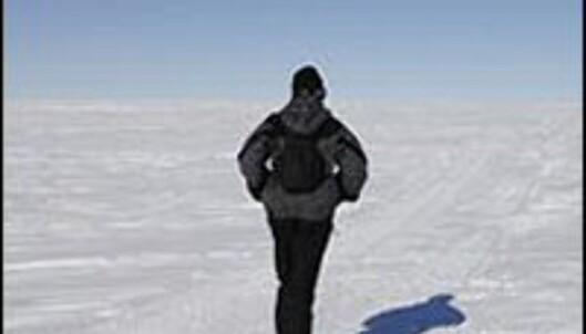 Husk ulvangsokkene! Foto: Polar Running Adventures
