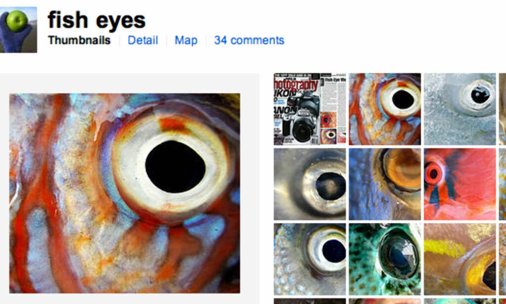 Fish eyes (faksimile, Flickr.com)
