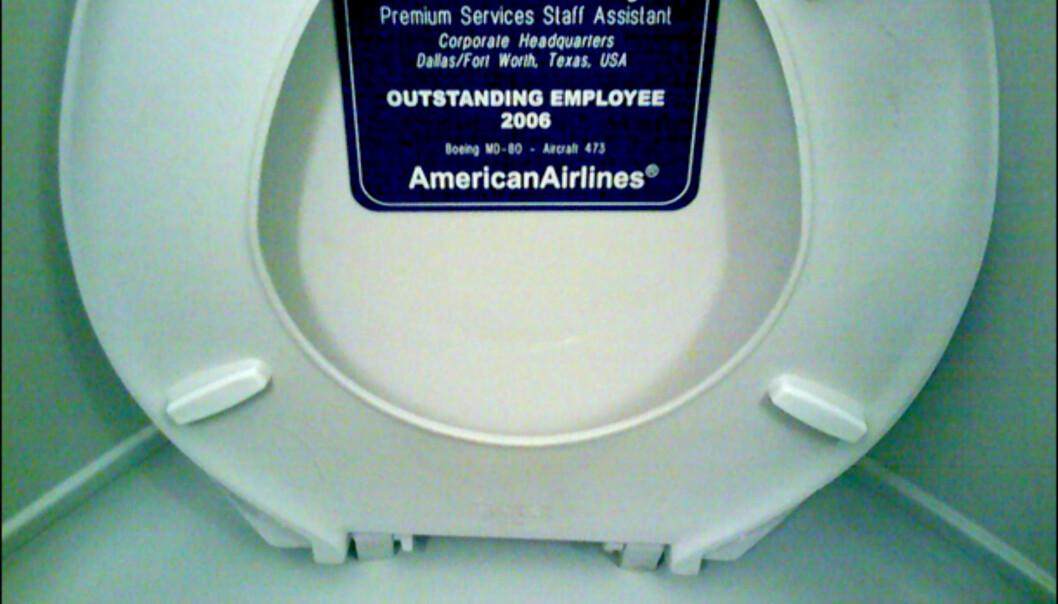 American Airlines vet hvordan de skal hedre sine ansatte. Foto: Michael Cote