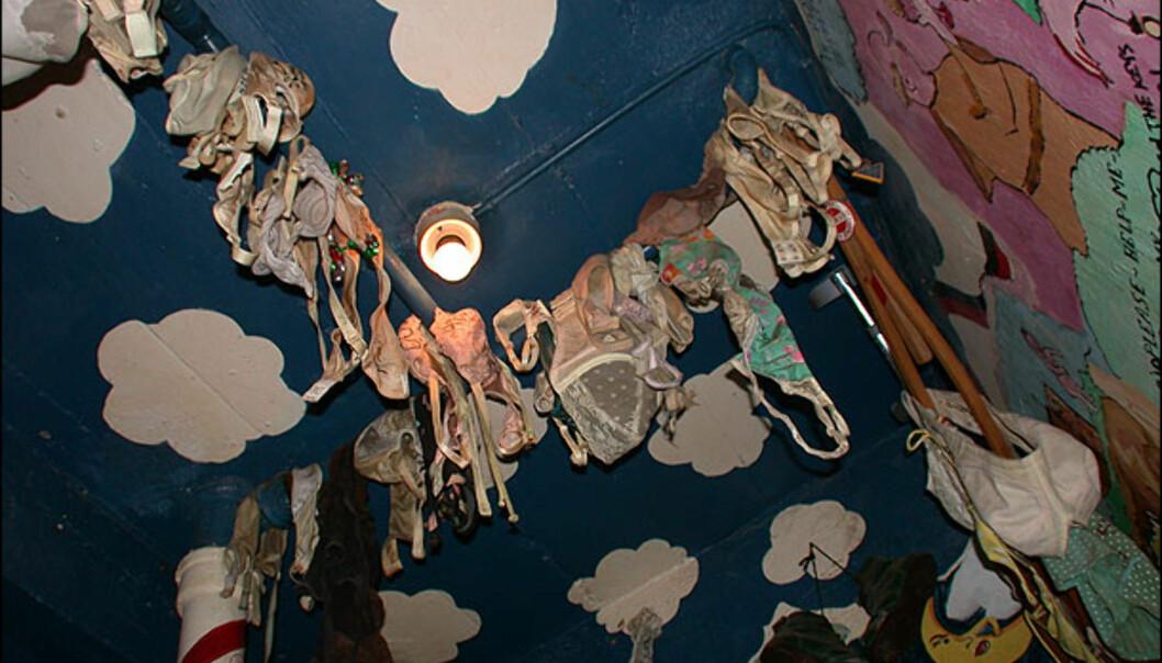 Fristende dekor på herredassen - skal vi tippe det blir en smule bomskudd på skåla med disse i taket? Fra Aruba. Foto: Karoline Brubæk