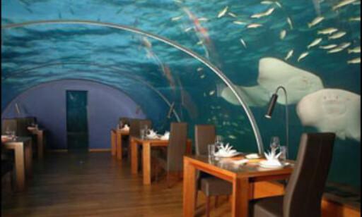 Dette er Ithaa som tilhører Hilton på Maldivene.