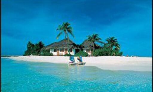 Maldivene Foto: Mantareiser
