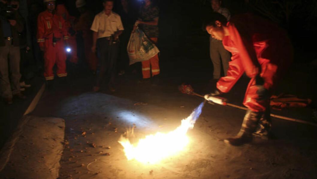 BRENNER VEPSEN: Brannmenn ødelegger veps i Ankang i Kina. Over 40 har blitt drept og 1600 stukket av aggressive kjempeveps de siste månedene. Foto: Stringer / Reuters