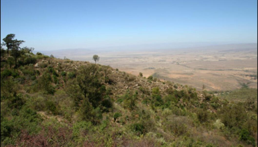 Utsikt over Great Rift Valley, verdens største forkastningssystem. Dalen strekker seg hele 640 mil fra Dødehavet i Israel til Malawi-sjøen.