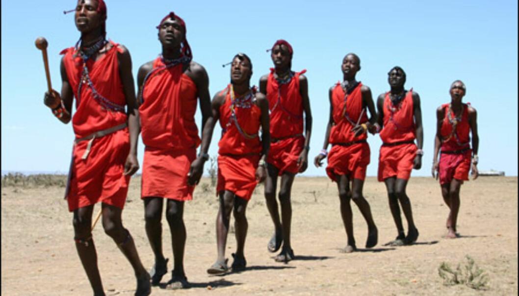 De færreste forlater Kenya uten å ha fått med seg en tradisjonell Masai-dans.