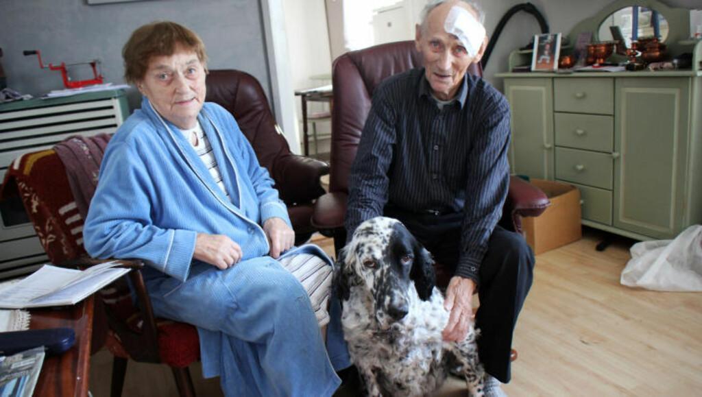 I GOD BEHOLD: Magga Dahl (90) og Nils Edvin Paulsen (85) er på beina igjen etter ulykken. Her med hunden Lady. Foto: Stian Hansen / Finnmarken