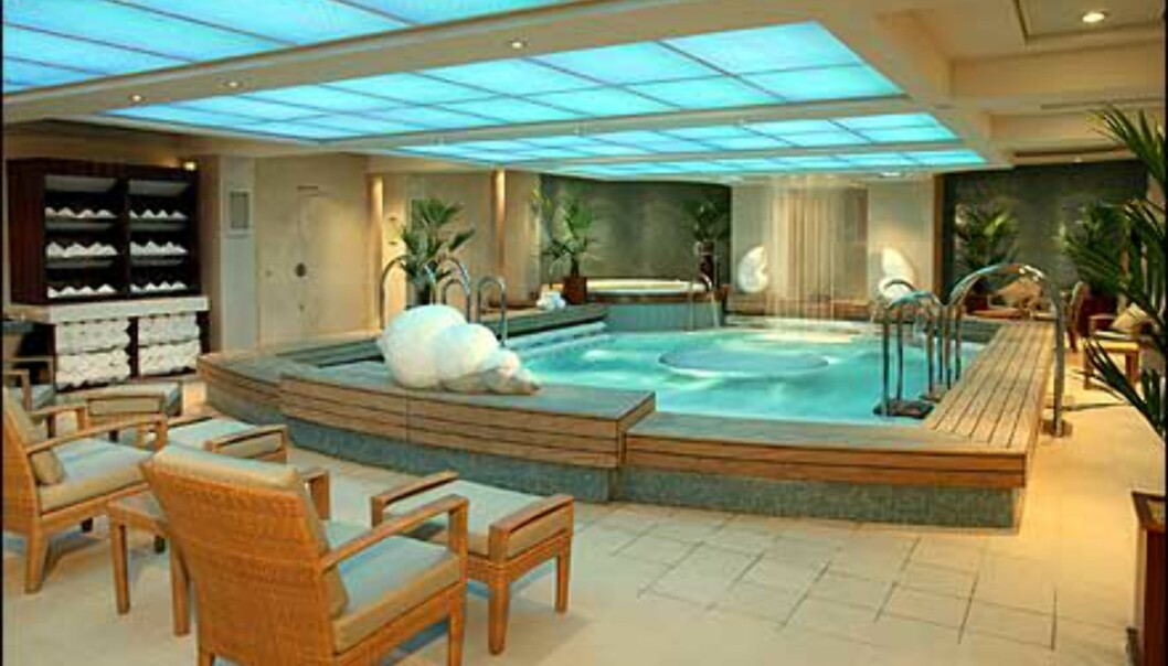 Ta deg en pause i <I>Therapy Pool</I>. Med fossefall, konkylier og pent danderte håndklær.