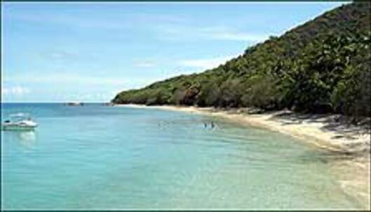 Hvite korallstrender på Fitzroy.