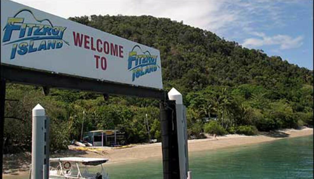 50 minutter med hurtigbåt fra Cairns ligger Fitzroy. Foto: Sindre Storvoll