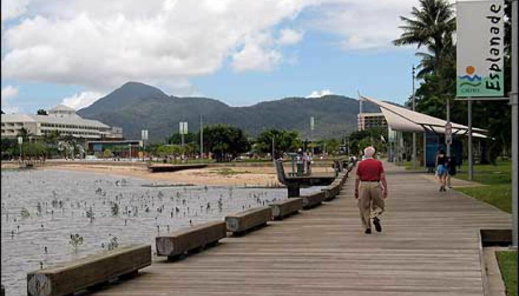 Fra The Esplanade i Cairns. Foto: Sindre Storvoll