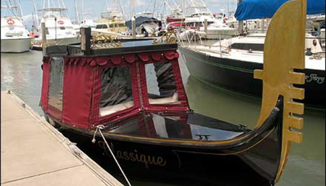 Merkverdighet i den ellers eksklusive båthavnen i Cairns. Foto: Sindre Storvoll