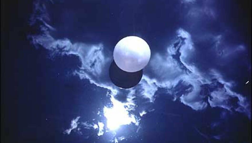 Som en del av utstilling som fokuserer på foto og levende bilder hører dette tvetydige bildet av Orozco til. Ball on Water er tittelen, men det minner jo mer om en måne. <br /> <I>Foto: Guggenheimmuseet</I>
