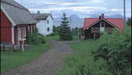 Grytøy Gjestestue ligger på Farmen-øya. <I>Foto: Grytøy Gjestestue</I> Foto: Grytøy Gjestestue