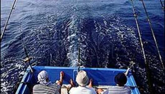 Utenfor Mersing i Malaysia finner vi Robinsonparadisene. Men det frister kanskje mer å dykke eller drive havfiske i dette vakre kystområdet? <I>Foto: Malaysian Tourism</I> Foto: Malaysian Tourism