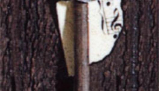 Detalj fra papirbilde