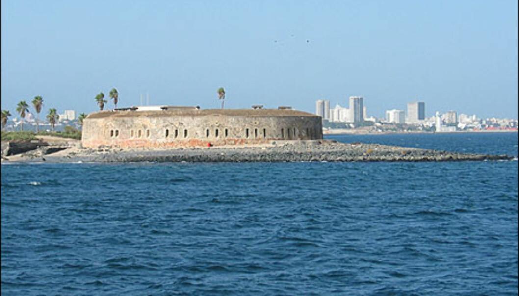 Slavehandel ble offisielt avskaffet i de franske områdene i 1848 (1833 i Storbritannia, 1865 i USA, 1963 i Saudi-Arabia, 1980 i Mauritania). Gorees fort ble bygget som et forsvar for de franske koloniene i Vest-Afrika i 1852.