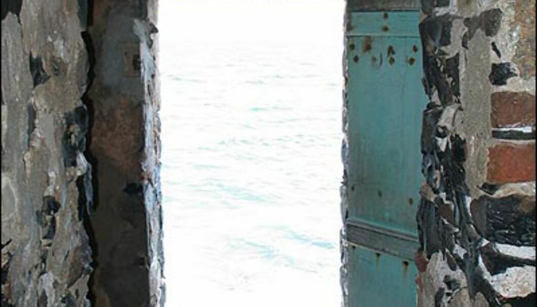 Slavene som ble fraktet gjennom denne porten kom aldri tilbake til Afrika. De ble skipet til Vest-India som arbeidere på slaveplantasjer.