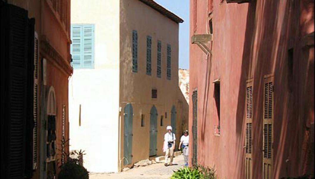 De fleste bygningene på Goree er malt i pasteller. Trange og koselige smug er noe av det Goree har å by på.