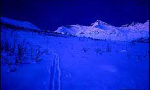 Mye moro lyser opp i de mørke polarnettene. Foto: Destinasjon Tromsø