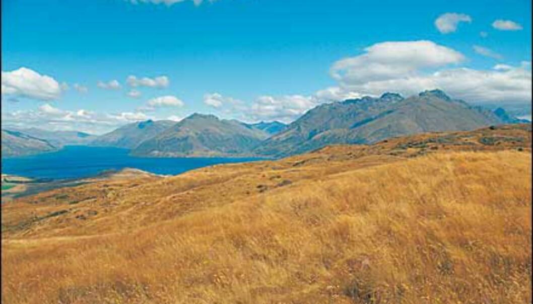 <I>Foto: Ian Brodie/Tourism New Zealand</I> Foto: Ian Brodie/Tourism New Zealand