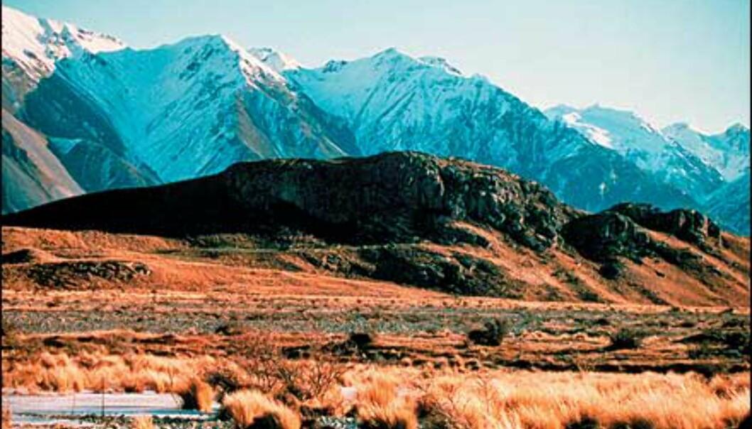 <I>Foto: Ashburton District Tourism/Tourism New Zealand</I> Foto: Ashburton District Tourism/Tourism New Zealand