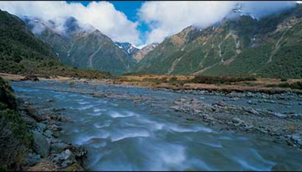 <I>Foto: Gilbert van Reenen/Tourism New Zealand</I> Foto: Gilbert van Reenen/Tourism New Zealand