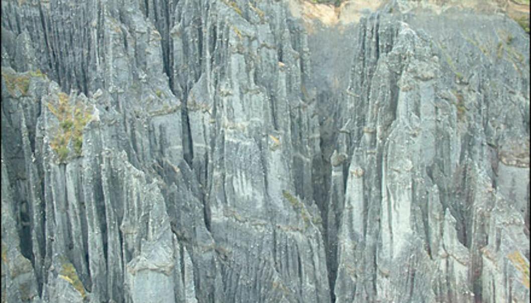 <I>Bilde fra NewZealand.com<I> Foto: Bilde fra NewZealand.com