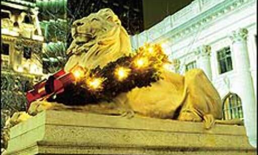 Noe for løvene foran Stortinget? Denne julepyntede pusen ligger foran New York Public Library. Bilde: Copyright Bart Barlow/NYC & Company, Inc.