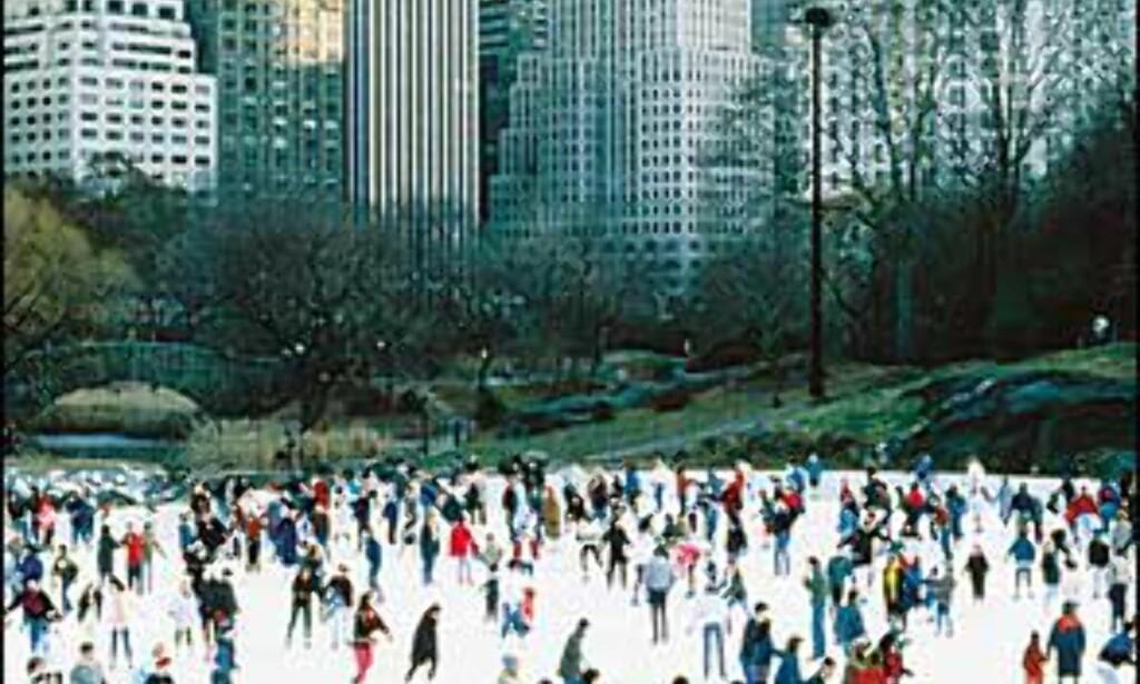 Wollman Rink, skøytebane i Central Park. Bilde: Copyright NYC & Company, Inc. Foto: Copyright NYC & Company, Inc.