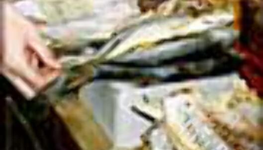 Tørket fisk - en delikatesse i mange land.