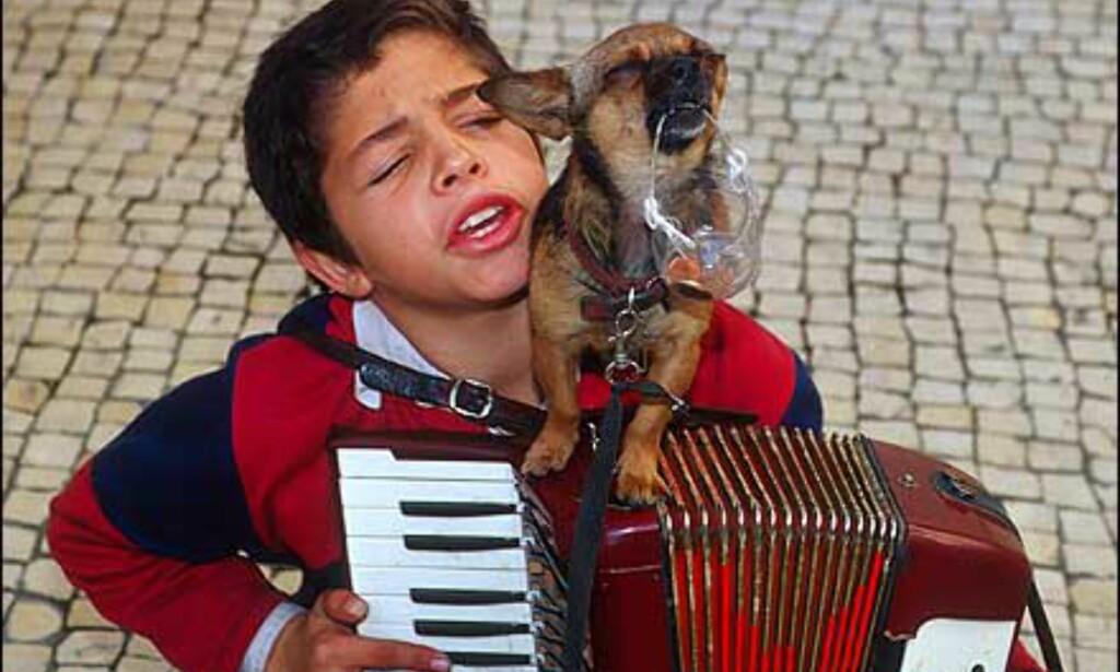 """To små gatemusikanter. Gutten synger, og den lille  valpen """"synger"""" med. Foto: Bjarne Nygård Foto: Bjarne Nygård"""