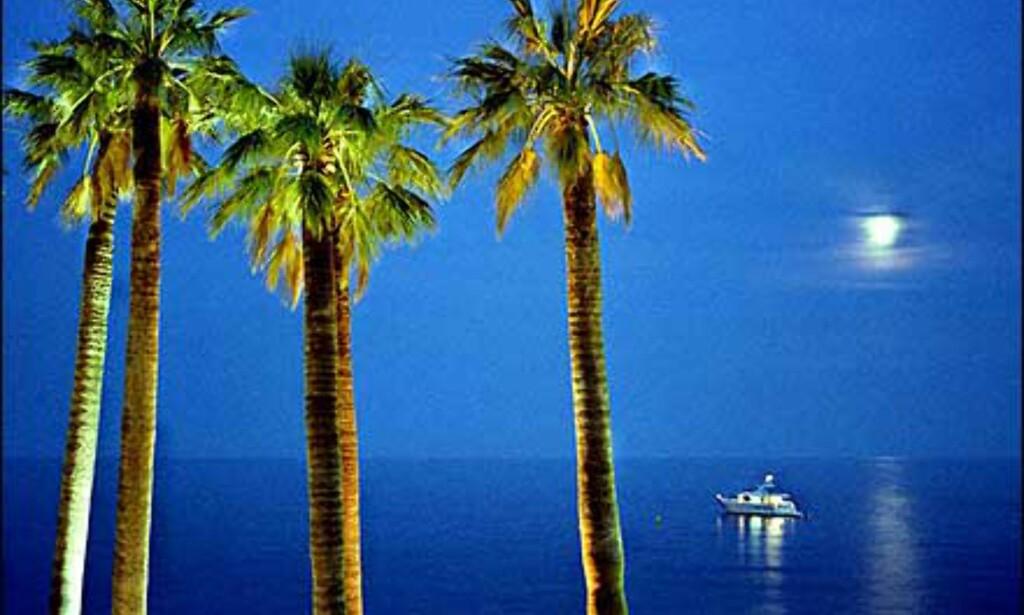 Den blå timen i Monaco, utsikt fra en restaurant. Foto: Åse Gustavsen Foto: Åse Gustavsen