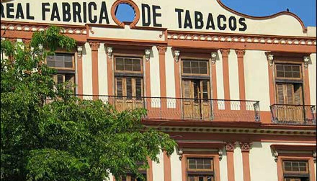En av Havanas 10 tobakksfabrikker. Foto: Lene Heiberg