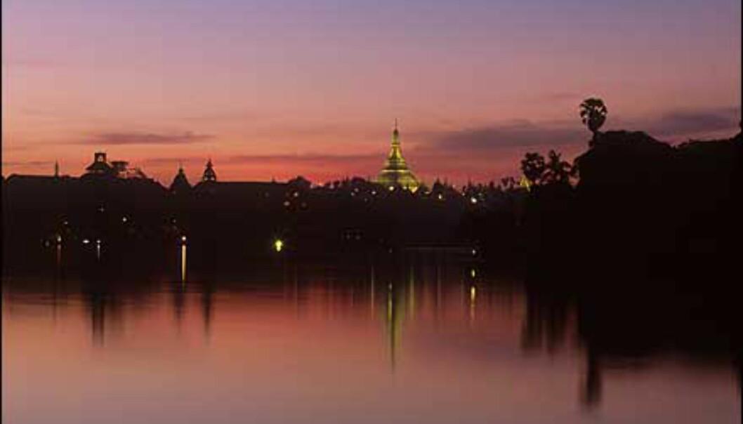 <strong>Yangon:</strong> Swedagon-templet sett fra Kandawgyi. Et av de fremste buddhisttempler i verden, og en av de viktigste severdighetene i Yangon. Kuppelen og annen dekor består blant annet av tilnærmet ni tonn gull. Pagoden er 99 meter høy.<br /> <br /> <br /> - De gamle kolonibygningene og innsjøene rundt byen er også verdt et besøk. Yangon, eller Rangoon, er en langt mer behagelig by enn f.eks. Bangkok. Ikke glem å ta en kald øl på legendariske Strand Hotell som er et typisk britisk kolonihotell av høy standard, forteller Stenersen. Foto: Haakon F. Stenersen