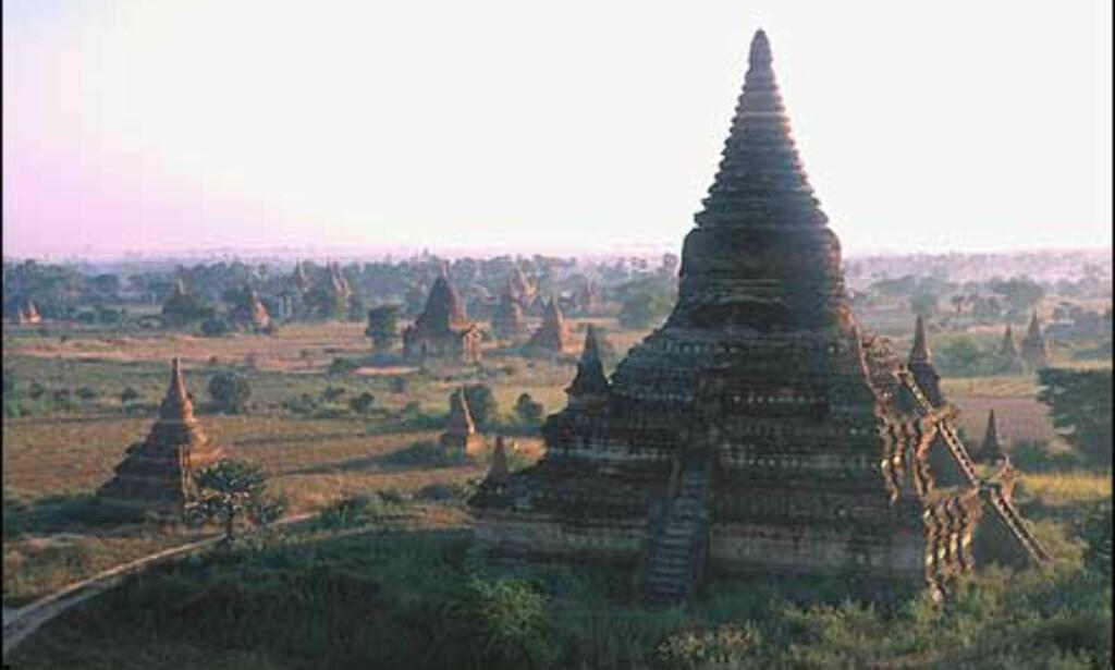 Tempelområdet i Bagan i soloppgang. Ruinene dekker omkring 42 kvadratkilometer, og har mer enn 2.000 monumenter. Området står på UNESCOs lister.    - En av de store severdighetene i Asia, men er fortsatt ikke særlig kjent. Består av hundrevis av større og små templer som er fra 700 til 900 år gamle, forteller Stenersen. Foto: Haakon F. Stenersen