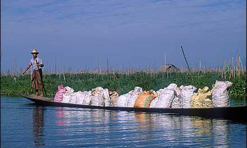 Smal båt med tung last på Inle. Hver 5. dag er det markedet, og markedet flytter fra sted til sted. Det gjelder å være på plass fra det tidligeste morgengry. Foto: Haakon F. Stenersen