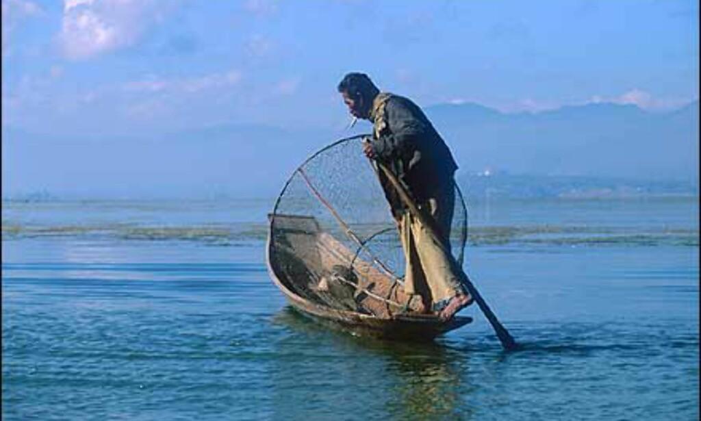 Fisker med spesielle redskaper på Inle. Fotpadlerne som de gjerne kalles, manøvrerer ved å stå bak i båten og ro med en fot og en åre. Begge hender er fri til å fiske med. Foto: Haakon F. Stenersen