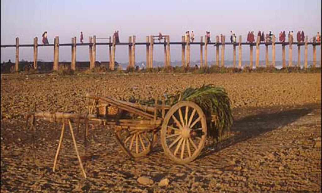 U-Bein bro står på teakstylter over Taungthaman-sjøen, og er verdens lengste i sitt slag med sine 1,2 kilometer. Den har stått i to århundreder. Sjøen tørker forøvrig opp hver vinter, og frigjør fruktbar mark som bøndene dyrker. Foto: Haakon F. Stenersen