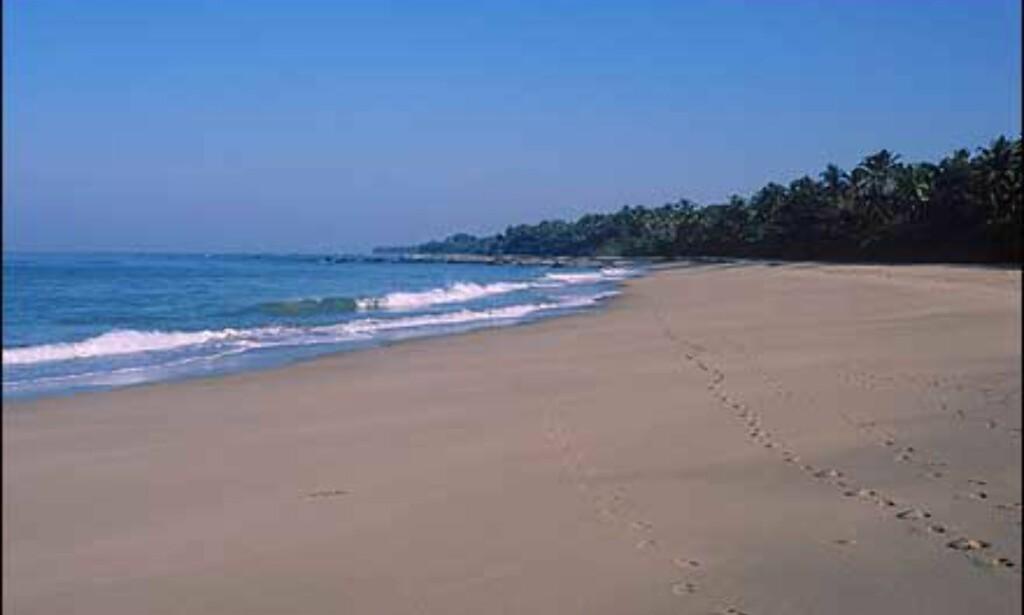 Chaungtha-stranden kan du oppleve å ha for deg selv.    - Burma har flere bra strender langs vestkysten men innkvarteringen er ofte basic. Veldig bra dykking i Sørøst-Burma, men dårlig infrastruktur og mangel på innkvartering. Dessuten er det noe bandittvirksomhet som gjør at mange av øyene er off limit. Et dykkesenter var under utvikling i januar i år i Mergui, forteller Stenersen. Foto: Haakon F. Stenersen