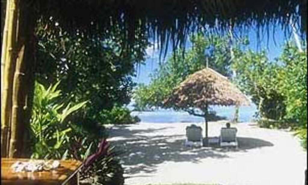 Strandhytte - det nestbeste valget. Foto: Coconuts Beach Club Foto: Coconuts beach club