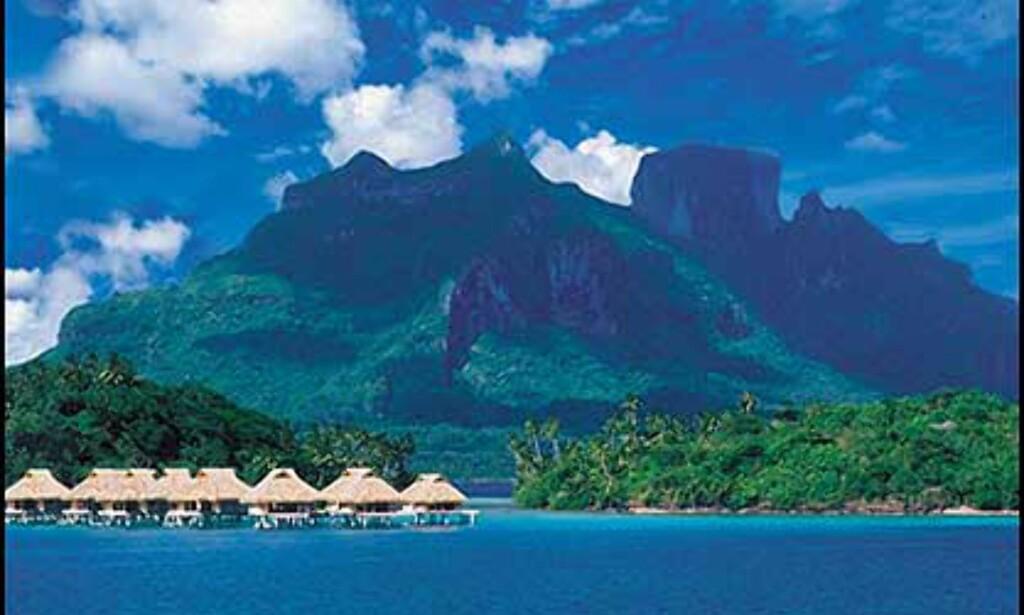 Bora Bora Nui Resort har 84 suiter i bungalower på stylter. Foto: Bora Bora Nui Resort Foto: Bora Bora nui