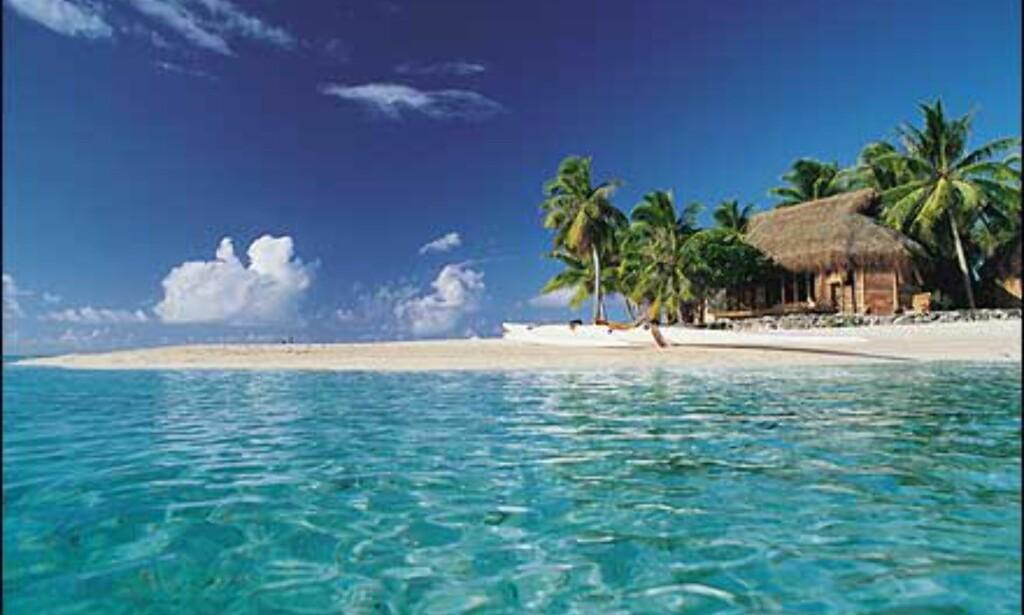 Stranden på Tikehau. Hotellet har 16 villaer i vannet og 14 på stranden. Foto: Tikehau Pearl Beach Resort Foto: Tikehau Pearl Beach Resort