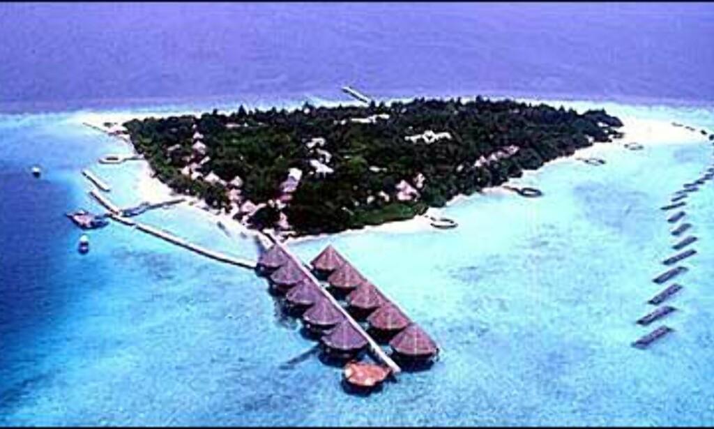Velidhu Island Resort på Maldivene har 80 strandhytter og ti på stylter i vannet. Foto: Velidhu Island Resort Foto: Velidhu Island Resort