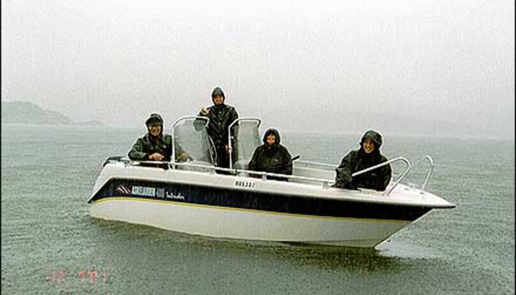 Båtvær i nord - ikke nok til å skremme denne gjengen på land. <I>Foto: Reidi Halsan</I> Foto: Reidi Halsan
