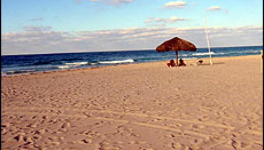 Drømmer du om en strand der du kan kle helt av deg? <I>Illustrasjonsfoto: Jon Erik Sæhle</I> Foto: Jon Erik Sæhle