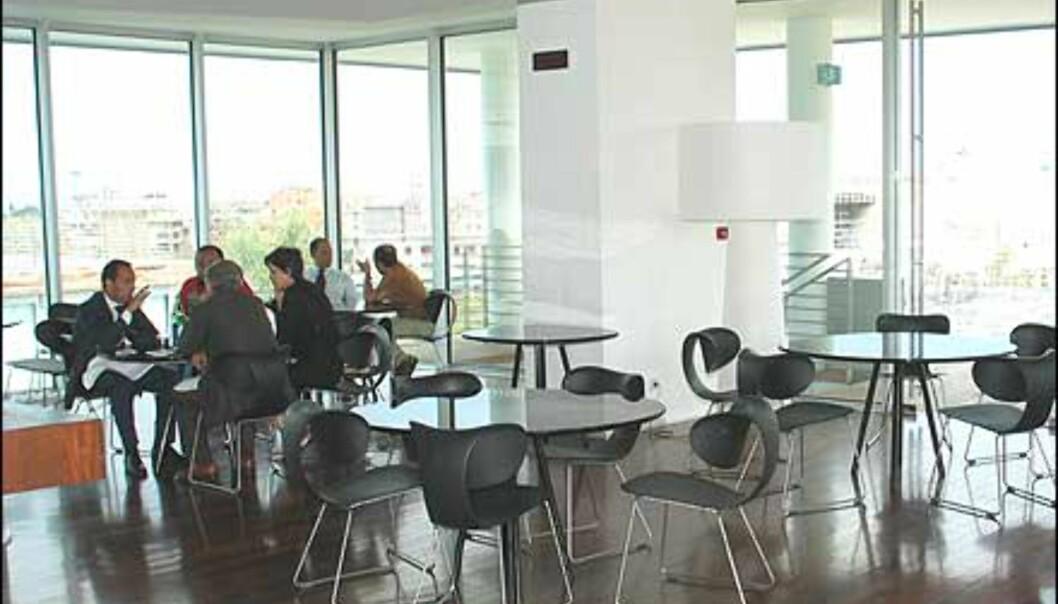 Spisesal med spreke stoler og flott utsikt.